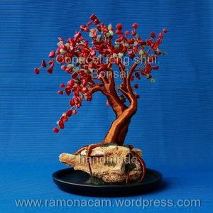 copacel-feng-shui-cu-coral-si-aventurin