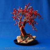 copacel feng shui cu coral si aventurin